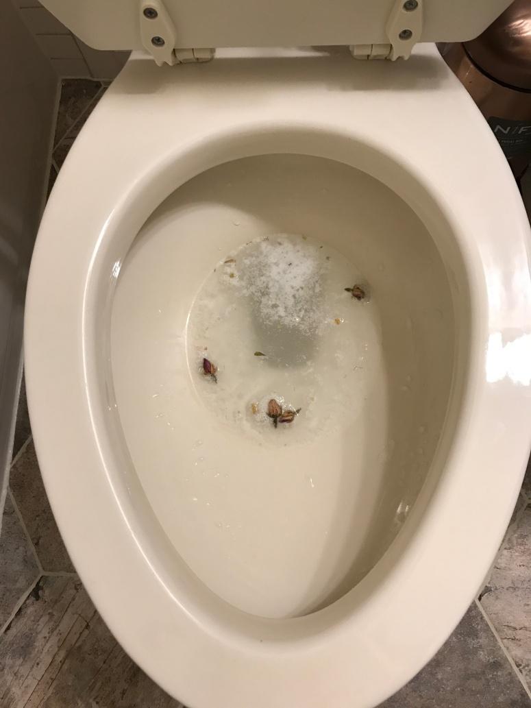 Fizzy Toilet